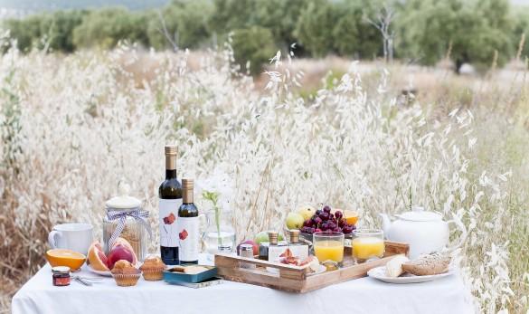 Desayuno mediterráneo picnic outside